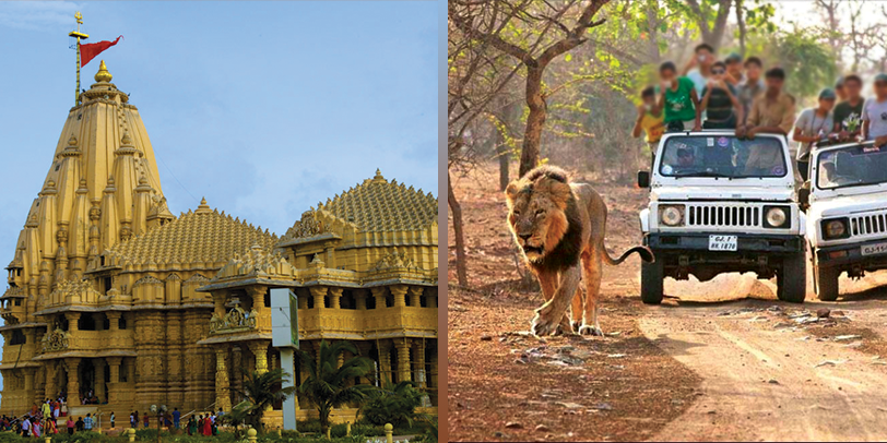 DWARKA-SOMNATH-AND-GIR-PACKAGE
